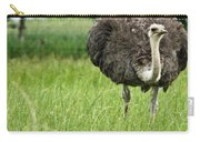 Browsing Ostrich Carry-all Pouch