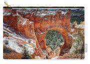 Bryce Arch Carry-all Pouch