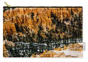 Bryce Canyon Series #3 Carry-all Pouch