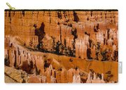 Bryce Canyon Series #4 Carry-all Pouch