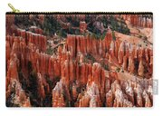 Bryce Canyon In Utah Carry-all Pouch