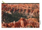 Bryce Canyon Vertical Carry-all Pouch