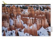 Bryce Canyon Winter 9 Carry-all Pouch