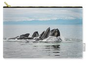 Bubble-net Group With Mountains In Alaska Carry-all Pouch