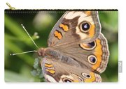 Buckeye Butterfly Square Carry-all Pouch