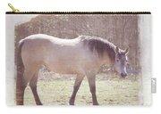 Buckskin Horse  Carry-all Pouch