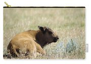 Buffalo Calf Carry-all Pouch