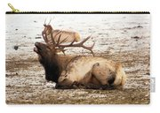 Bull Elk Calls Out Carry-all Pouch