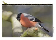 Bullfinch Carry-all Pouch