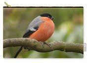 Bullfinch Carry-all Pouch