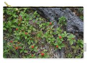 Bunchberry Berries Carry-all Pouch