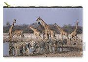 Burchells Zebra Equus Burchellii Carry-all Pouch