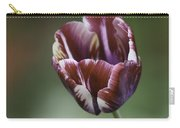 Burgandy Striped Tulip Squared Carry-all Pouch