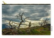Burmis Tree And Wind Swept Pines Carry-all Pouch