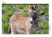 Burro Babe Carry-all Pouch