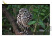 Burrowing Owl Color Version Carry-all Pouch