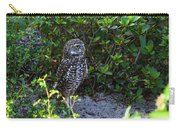 Burrowing Owls At Guard Carry-all Pouch