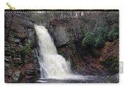 Bushkill Falls Carry-all Pouch