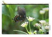 Butterfly 140 Carry-all Pouch