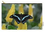 Butterfly Blue Striped Carry-all Pouch