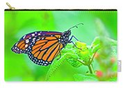 Butterfly Series #13 Carry-all Pouch