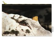 Butterfly Standing On Rock Carry-all Pouch
