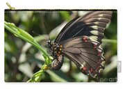 Butterfly Surprises Carry-all Pouch