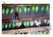Butterfly With Butterfly Chrysalis 1 Carry-all Pouch
