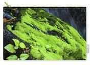 By The Waterfall Carry-all Pouch