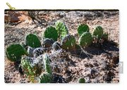 Cactus, Arches National Park Carry-all Pouch
