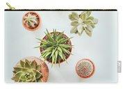 Cactus Pots Carry-all Pouch