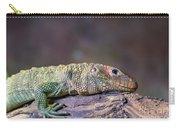 Caiman Lizard Carry-all Pouch