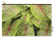 Caladium Leaves Carry-all Pouch