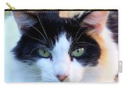 Calico 2 Carry-all Pouch