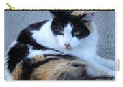 Calico 3 Carry-all Pouch