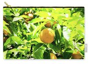 California Bright Orange Fruit Tree In Downtown Sacramento In Ca Carry-all Pouch