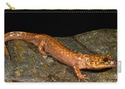 California Giant Salamander Carry-all Pouch