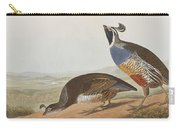 California Partridge Carry-all Pouch