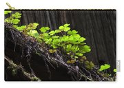 California Redwoods 4 Carry-all Pouch