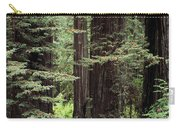 California Redwoods Carry-all Pouch
