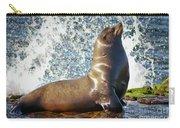 California Sea Lion At La Jolla Cove Carry-all Pouch by Sam Antonio Photography