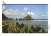 Camelback Island Carry-all Pouch