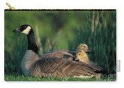 Canada Goose With Goslings Carry-all Pouch by Alan and Sandy Carey and Photo Researchers