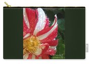 Candy Cane Dahlia Carry-all Pouch