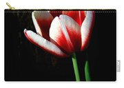 Candy Cane Tulip Carry-all Pouch