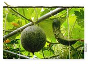 Cantaloupe And Hanging On Tree 1 Carry-all Pouch