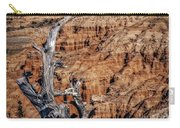 Canyon View Nevada Carry-all Pouch