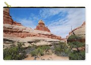 Canyonlands Spring Landscape Carry-all Pouch