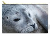Cape Ann Seal Carry-all Pouch