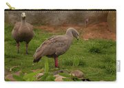Cape Barren Geese Facing Right Carry-all Pouch